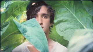 "Adriano Tardolio in ""Happy as Lazzaro""."